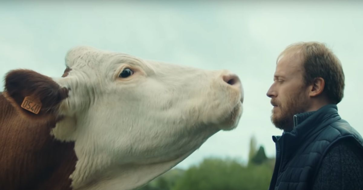 film-charal-vache-eleveur